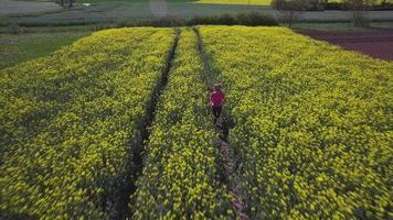 Frau läuft in der Natur video