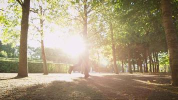 junge Frau, die vorwärts Kamera nach außen in hellem sonnigem Tag läuft