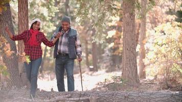 coppia senior in una passeggiata nella foresta alla telecamera, a sinistra del fotogramma video