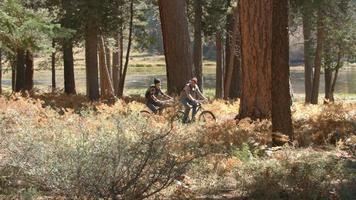 coppia che parla mentre vanno in mountain bike lentamente nella foresta