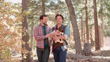genitori maschi nella foresta con il bambino in imbracatura passano fuori tiro video