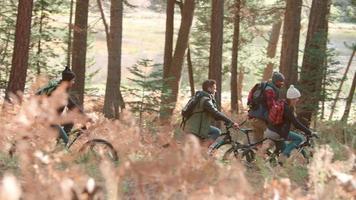 gruppo di amici in bicicletta su un sentiero nel bosco, vista laterale