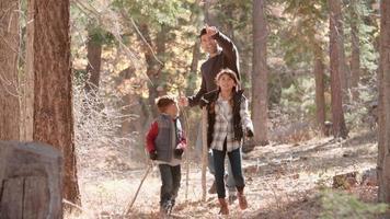 padre che cammina nella foresta con due bambini, raccoglie una pigna