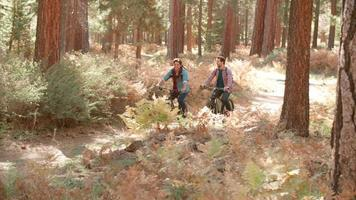 coppia maschile parla mentre attraversano una foresta, vista frontale