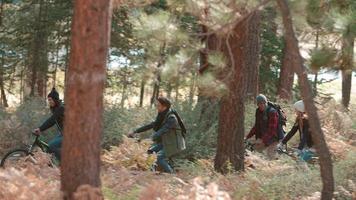 amici che vanno in bicicletta nella foresta, vista laterale, da destra a sinistra