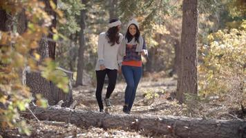 Lesbian couple enjoy a walk holding hands in a forest video