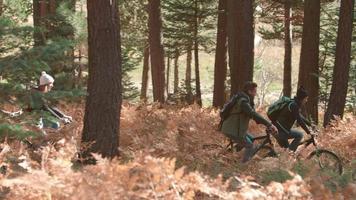 Freunde, die im Wald Fahrrad fahren, Seitenansicht, Pfanne von links nach rechts video