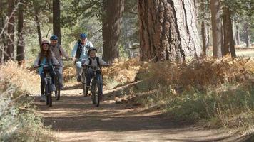 nonni e bambini che vanno in bicicletta nella foresta, vista frontale video