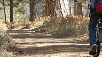 nonni e bambini in bicicletta su sentiero nel bosco, rallentatore video