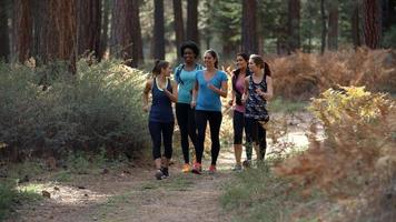 Group of five women runners talking as they walk in a forest