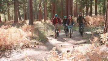 Four friends cycling past in a forest, front view