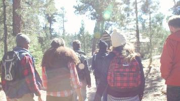 seis amigos caminando por una cabaña en un bosque, vista posterior, filmada en r3d