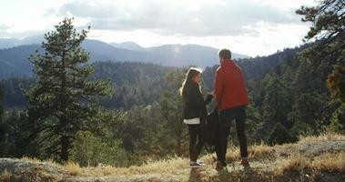 giovane coppia in viaggio ammira il panorama e scatta selfie, girato su r3d