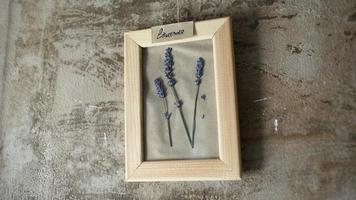 flores de lavanda em porta-retratos na parede video