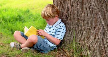 kleiner Junge liest ein Buch
