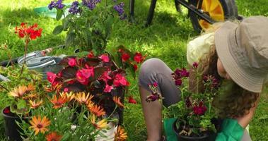 ragazza carina con un vaso di fiori in giardino video