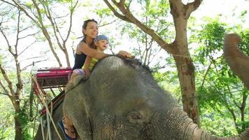 mamma e figlia che alimentano elefante con banana. mamma e figlia trascorrono del tempo in viaggio. video