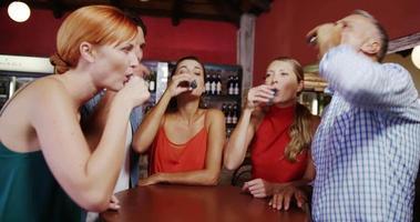 amigos brindando tequila em bar video