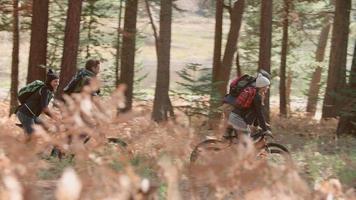 Cuatro amigos hablan y andan en bicicleta por un sendero forestal, vista lateral