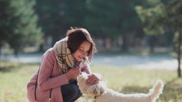jovem sorridente caminhando com seu cachorro em um dia ensolarado