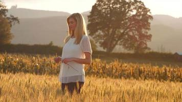 Hermosa mujer rubia de pie en un campo de trigo