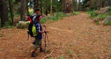 vista dall'alto delle coppie di escursionisti alla ricerca della loro direzione video
