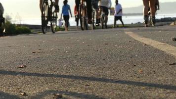 Gruppe junge Fahrradfahrer, die sonnigen Tag reiten