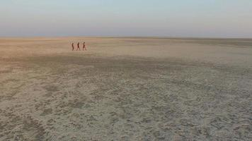 Aerial view of three Bushmen walking over the vast expanse of the Makgadikgadi Pans, Botswana video