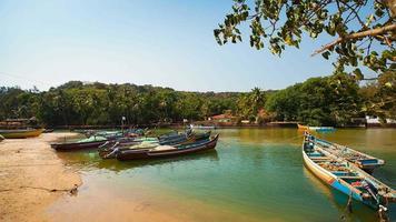 timelapse de barcos estacionados no rio em goa, índia video