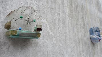 Birdcages On A Wall Near A Seaside In Greece