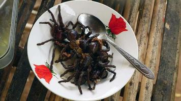 Deep fried tarantulas on a bowl video