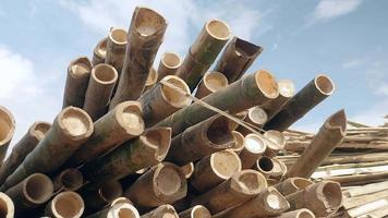 pannen winkel van een stapel bamboestokken op de rivieroever