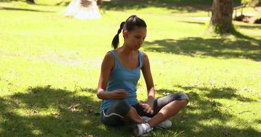 Fit woman stretching in the park