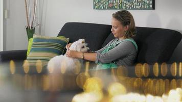 proprietario del cane donna che mette collare antipulci per accarezzare video