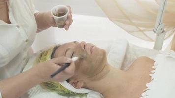 Kosmetikerin legte Maske aus grünem Ton auf Frauengesicht im Schönheitssalon