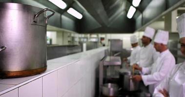 chefs travaillant à la cuisinière avec un sourire video