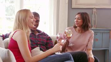 gruppo di amici che bevono vino a casa girato su r3d video
