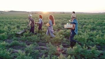 giovani che camminano con la raccolta di ortaggi biologici video