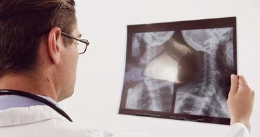 médico estudando raio x