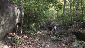 uomo e donna che camminano sul sentiero nel bosco video