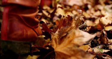 Frau, die durch Herbstblätter auf Boden geht
