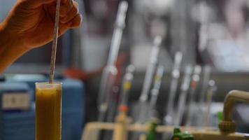 Winemaker Making Wine Test in Winery Cellar video