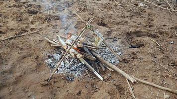 Mujer mirando pescado asado a fuego abierto