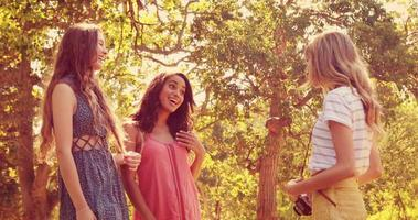 bella donna bionda che scatta foto dei suoi amici nel parco