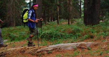 vista lateral de casal de alpinistas caminhando