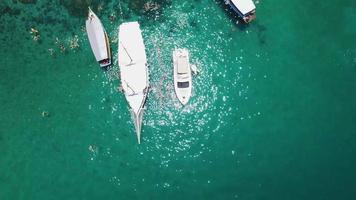 Aire tiro increíble fotografía cenital de la costa de una isla paradisíaca en Brasil