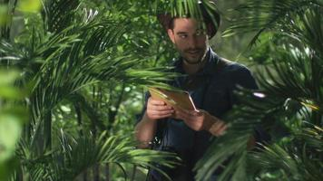 Abenteurer im Hut mit Tablette im Dschungelwald. video