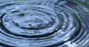gotas de chuva caindo na água