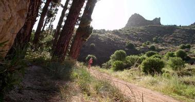 corridore in abbigliamento sportivo colorato fare jogging su un sentiero di montagna