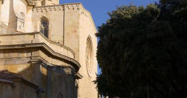 Cattedrale di Tarragona luce del sole albero 4K